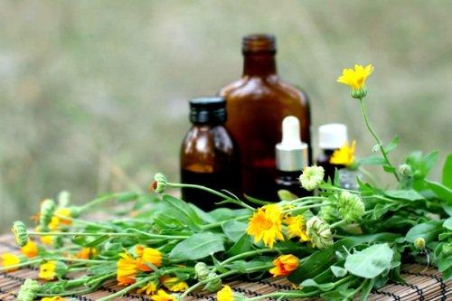 лекарственные настои для быстрого восстановления бровей